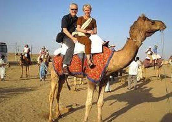 Jodhpur Camel Safari - Private Day Tours