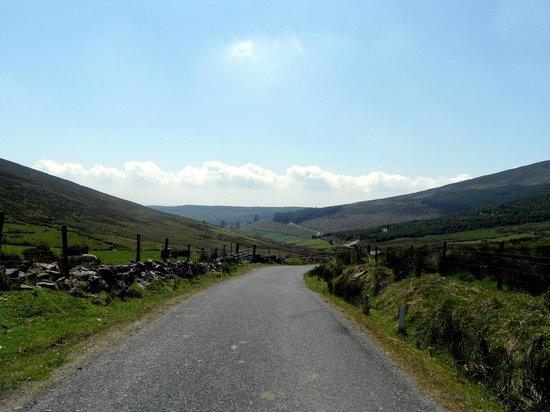 Knockmealdown Mountains: Start of drive into mountain