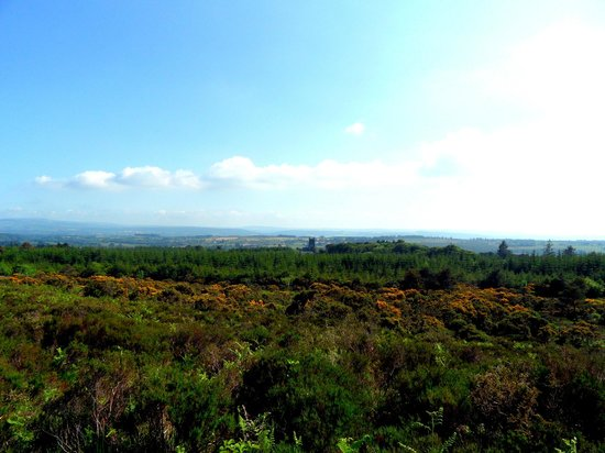 Knockmealdown Mountains: View of Melleray in the distance from Knockmealdown's