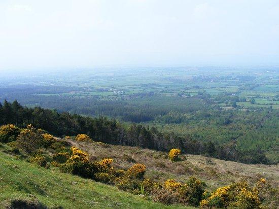 Knockmealdown Mountains: The Vee