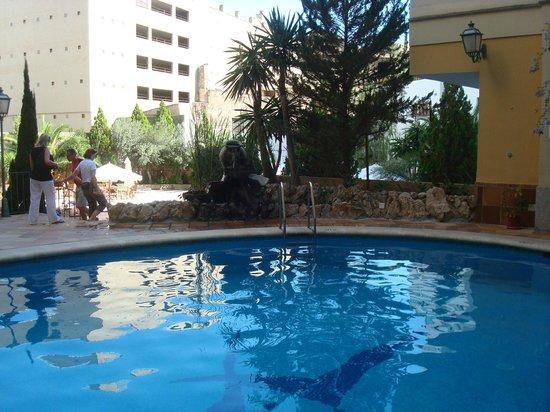 Hotel Saratoga: poolside