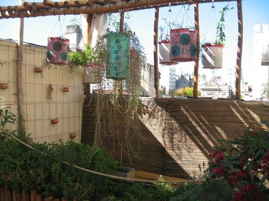 Apassionata Tango: Kräutergarten