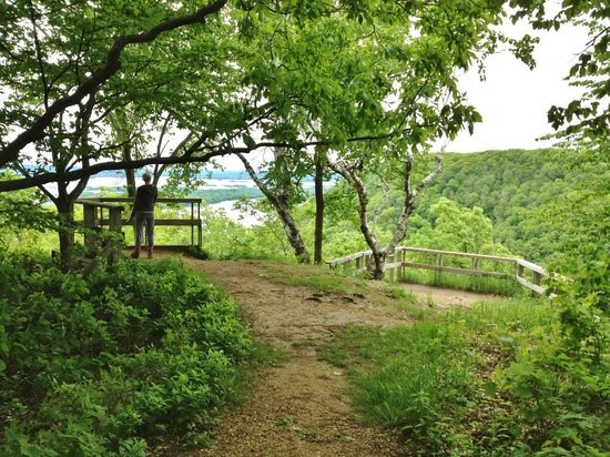 Great River Bluffs State Park : Overlook