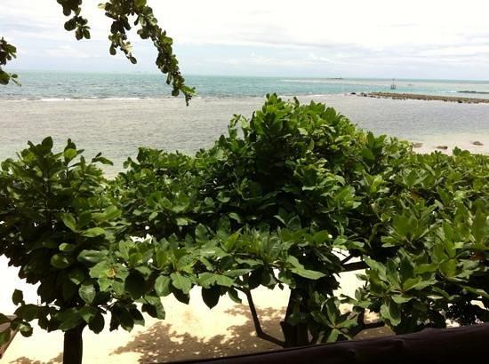 Zdjęcie Loyfa Natural Resort