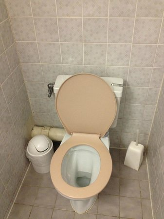 Capitole Hotel: The toilet seat is very very old