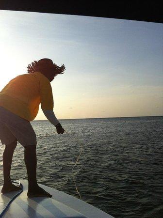 Tranquility Bay Resort: Panni