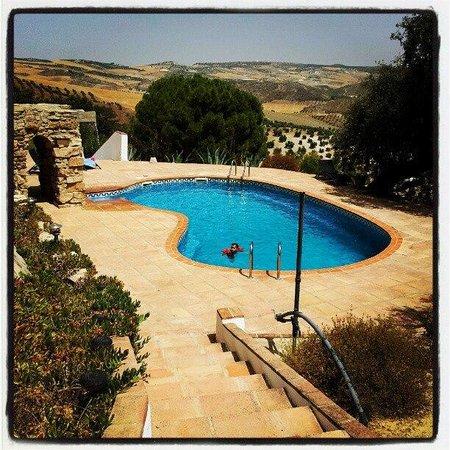 Cortijo Rosario: villa pool