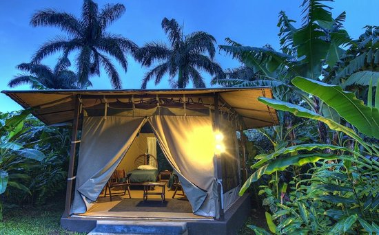 Pura Vida Retreat & Spa: Tent Accomodations