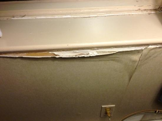 Travelodge Hotel Montreal Airport : mold on the walls