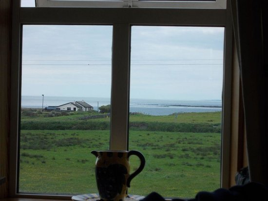 Berry Lodge: Blick aus dem Fenster