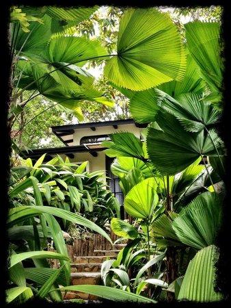 Rancho Pacifico: Villa Romantica