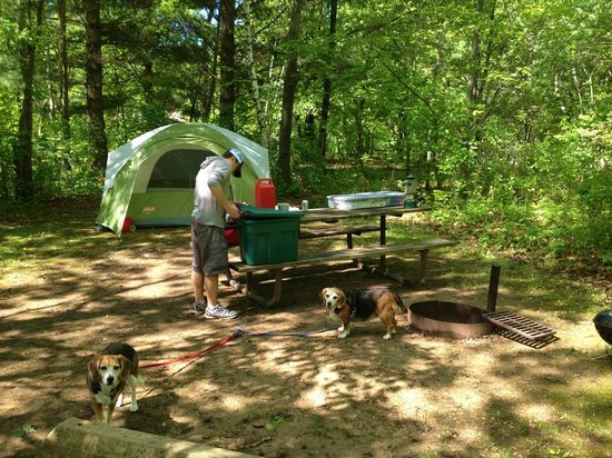 Great River Bluffs State Park: Large Campsite