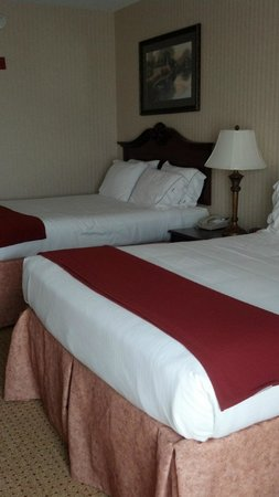 Holiday Inn Express Hotel & Suites Kingsport-Meadowview I-26: Room 305