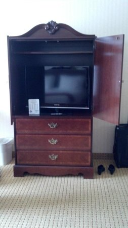 Holiday Inn Express Hotel & Suites Kingsport-Meadowview I-26: TV