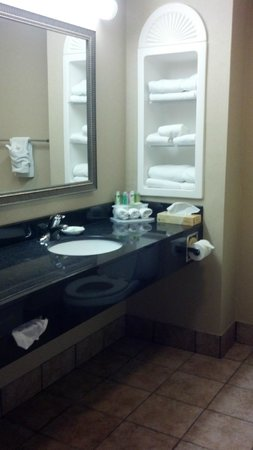 Holiday Inn Express Hotel & Suites Kingsport-Meadowview I-26 : Bathroom