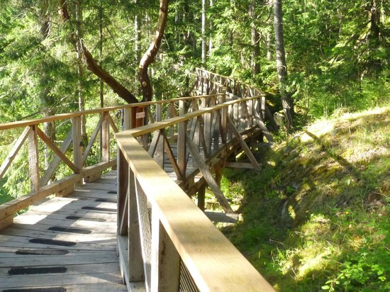 Rockwater Secret Cove Resort : The boardwalk to the tents