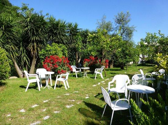 Best Western Hotel La Solara Sorrento: Garden