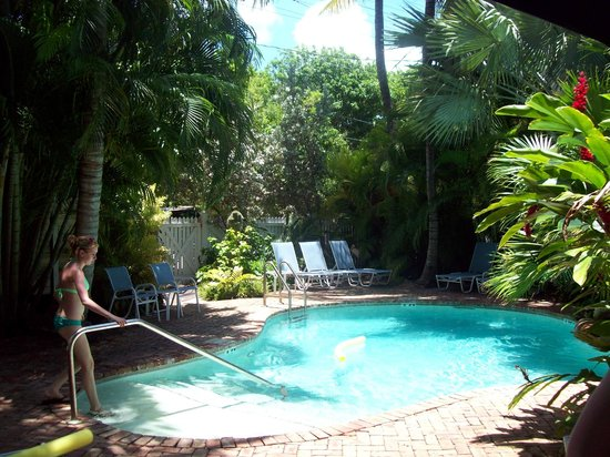 Angelina Guest House: view from pool over to security/privacy gate/fence by parking area