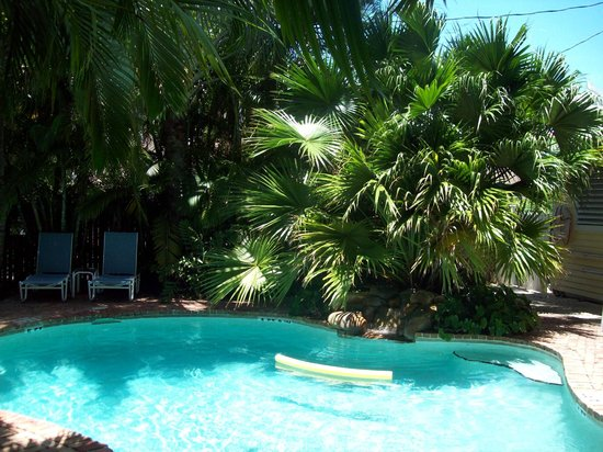 Angelina Guest House: More pool foilage