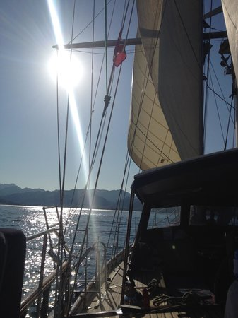 Tudor Dawn Sailing Charters : Stunning sunset
