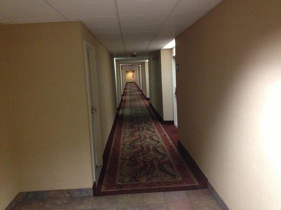 Hampton Inn Chattanooga-Airport/I-75: Interior Corridor Hallway