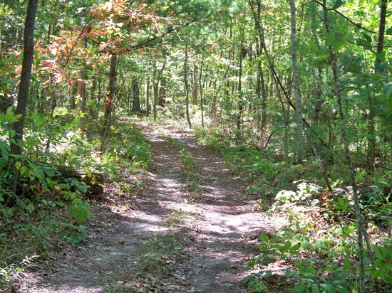 Deer Run RV Resort: Walking trail around lake
