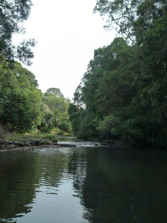 สไปเซอร์ ทามารินด์ รีทรีท: River walk