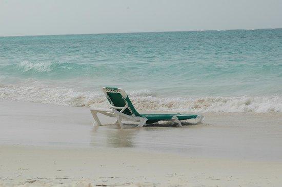 Grand Palladium Punta Cana Resort & Spa: La plage