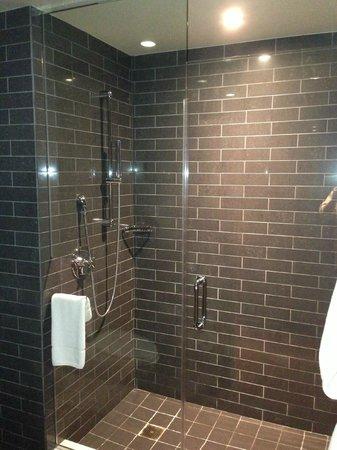 Andaz San Diego: Shower
