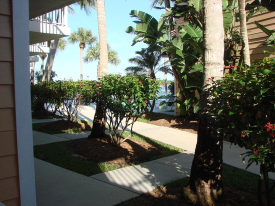 Jupiter Waterfront Inn: From patio to pool