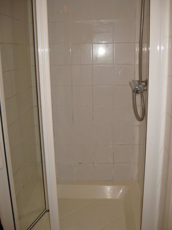 Black Lion Guesthouse: small shower