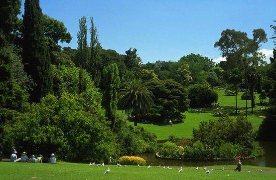 Royal Botanic Gardens Victoria - Melbourne Gardens: Royal Botanic Gardens Melbourne