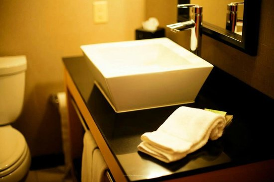 Cambria hotel & suites Maple Grove - Minneapolis: Bathroom
