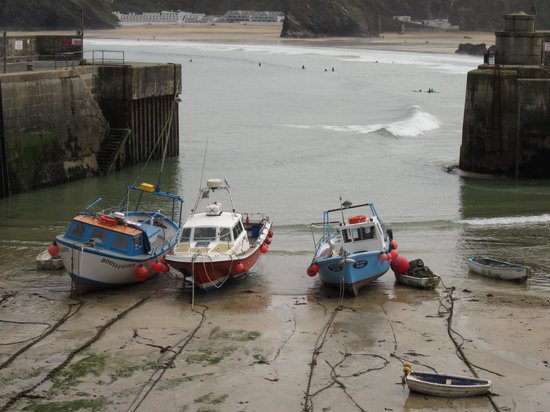 Summer Breeze: Newquay Harbour