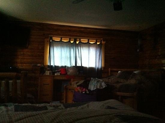 Twin Pines Lodge And Cabins: why spoil a great cabin with flimsy curtains?