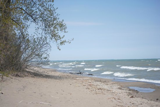 Point Pelee National Park: East Barrier Beach, at the end of the Shuster Trail