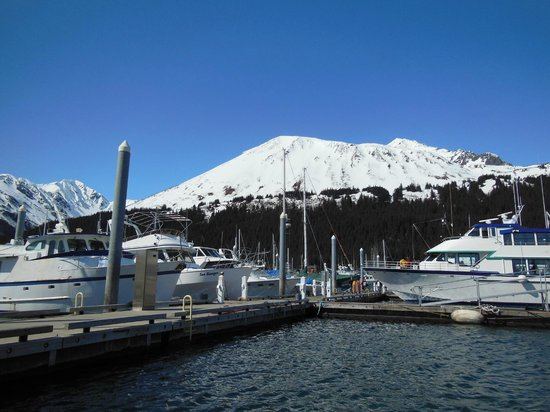 Leaving Seward Harbor for Orca Island Cabins