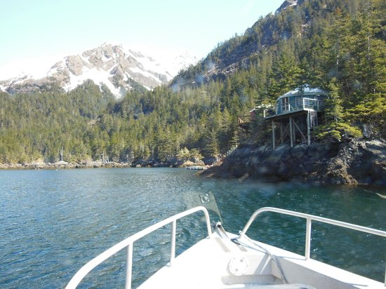 Orca Island Cabins: View of yurts as you approach while on the boat