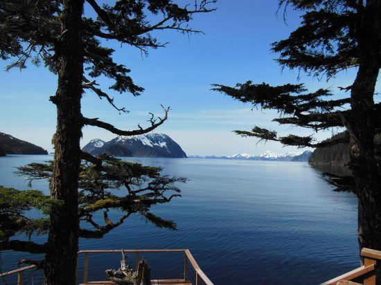 Orca Island Cabins: View of Hat and Fox Islands - from the yurt deck