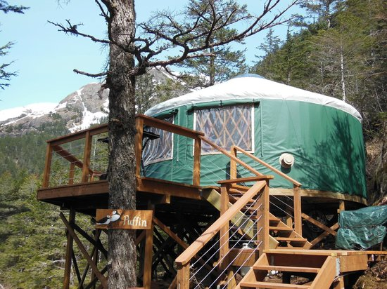 Orca Island Cabins: View of one of the yurts
