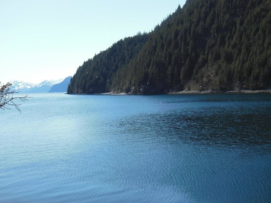 Orca Island Cabins: View of Humpy Cove