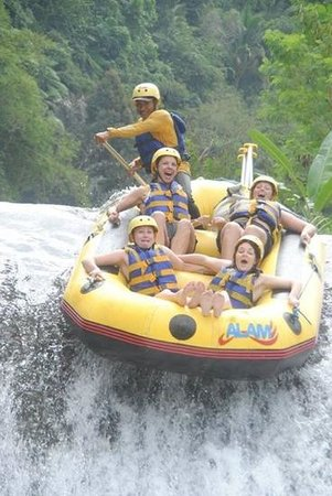 Bali Island Adventure Tours - Private Day Tours