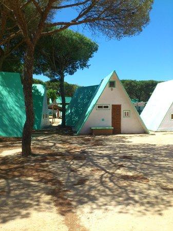 Camping Doñana Playa: Barracas