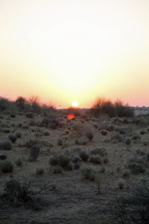 HACRA Dhani: Sunset over the desert.