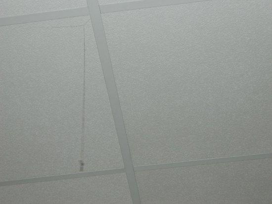 ABE Hotel: ceiling