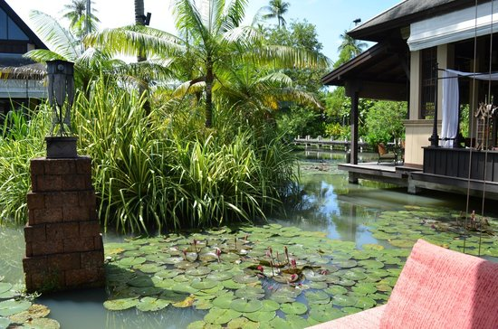 Anantara Mai Khao Phuket Villas: ここは、フロントの近くの池です 雰囲気があります