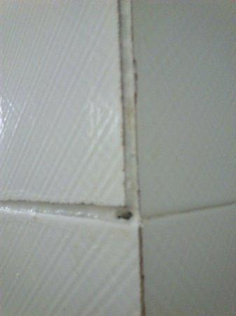 Hesperia Murcia : mugre entre azulejos que se debieron desprender y que pegaron con silicona