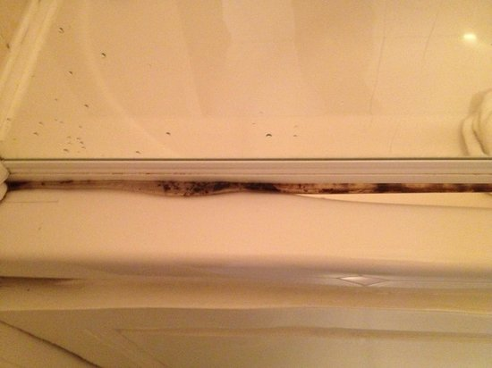 Drury Court Hotel: Mould on shower screen - apt.43