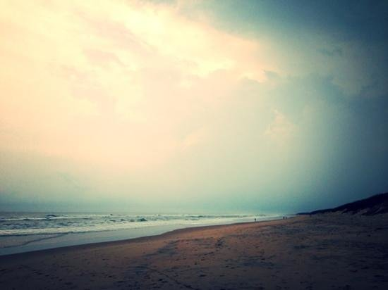 Puri Beach: Not a single human being to be spotted at Beleshwar beach; unbelievably calm and serene.