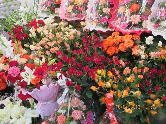Tangier Tours - Day Tours : Herrliche Blumen